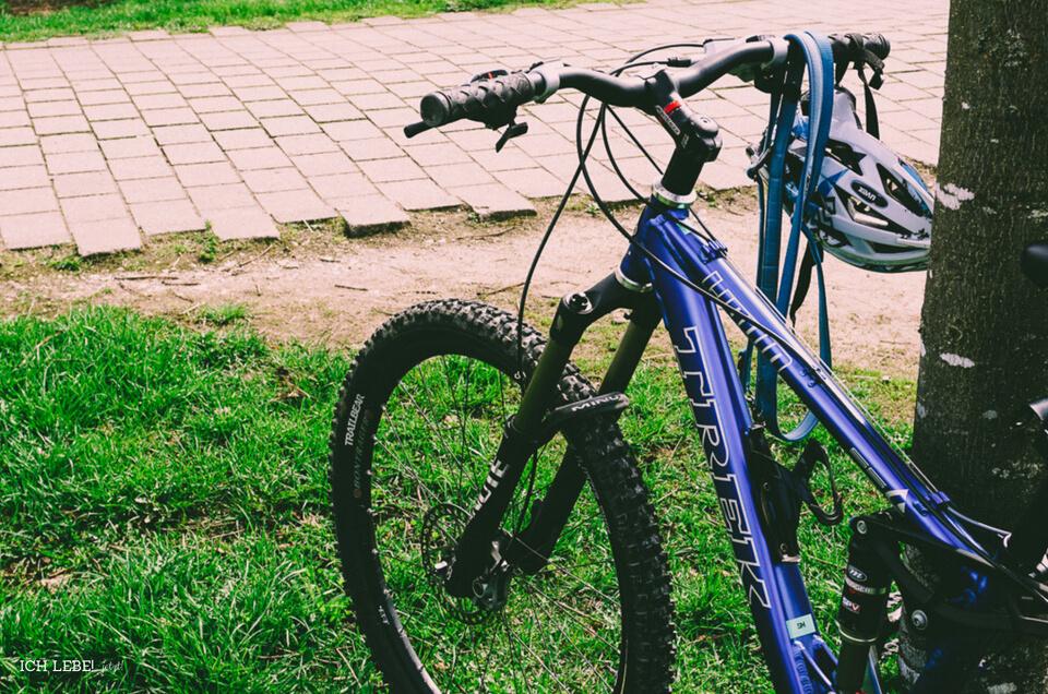 Mountainbike, angelehnt an Baum.
