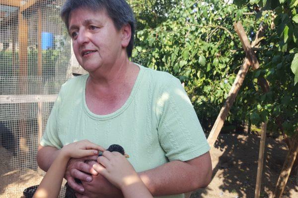 Die Lebensgefährtin vonErwin Betzenbichler hat ihre Liebe zu alten Hühnerrassen entdeckt und züchtet mit Leidenschaft.
