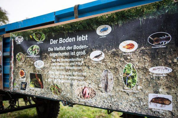Infobanner über die Vielfalt der Bodenorganismen